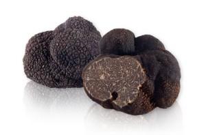 European black truffles (Tuber melansporum)